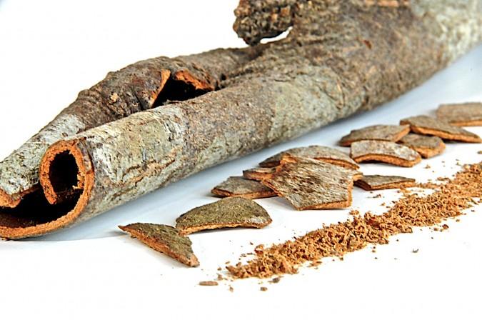vietnamese-cinnamon-101-675x448