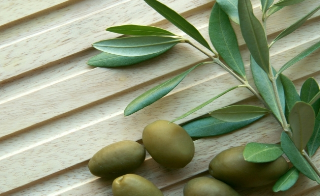 olive-leaf-extract1